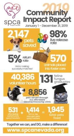 Infographic of the spca community report.