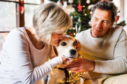 Senior couple with dog in the middle at Christmas.