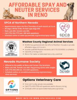 graphic detailing spay and neuter services in Reno, NV