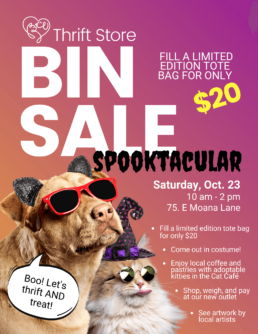 Flyer advertising the Bin Sale Spooktacular on Oct 23!